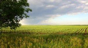 Проект агростраховой Концепции пополнился хмельницкими предложениями