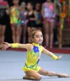 У Львові відбудеться  дитячий турнір з художньої гімнастики