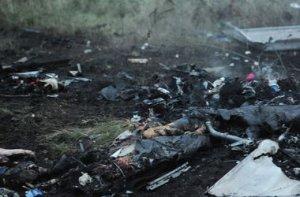 Малайзія хоче створити міжнародний трибунал з розслідування падіння Boeing на Донбасі