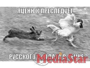 Як Яценюк воював у Чечні