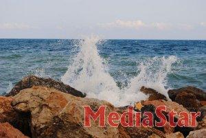 Тварини у Чорному морі можуть вимерти, - прогноз науковців