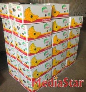 Працівники Львівської митниці ДФС виявили понад 700 кг зайвих бананів