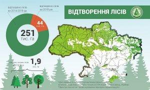 В Україні торік відтворили майже 44 тисячі гектарів лісів — Держагентство