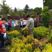 У Бродівському лісгоспі школярам продемонстрували технологію вирощування садивного матеріалу