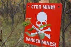 Під Мар'їнкою знешкодили понад 40 мін із іноземним маркуванням