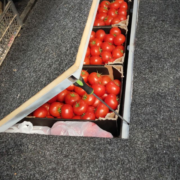 Працівники Львівської митниці ДФС вилучили прихований товар