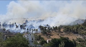 Масштабна лісова пожежа спалахнула в Чорногорії