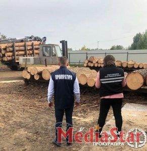 Розкрадання та реалізація деревини із національного парку на Львівщині – викрито злочинну групу осіб