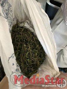 За продаж наркотиків та психотропів у Бродах судитимуть місцевого мешканця