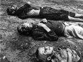 У ПАРЄ дилема: визнавати чи не визнавати Голодомор в Україні геноцидом українського народу?